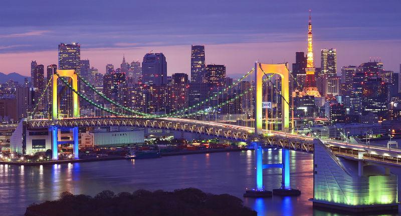Tokyo's Nocturnal Playground