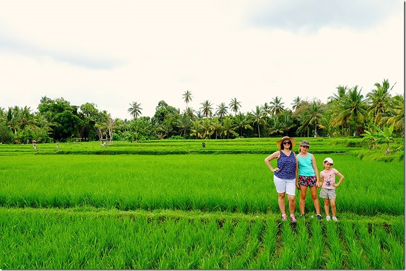 Ubud Walking Tour Including Lunch