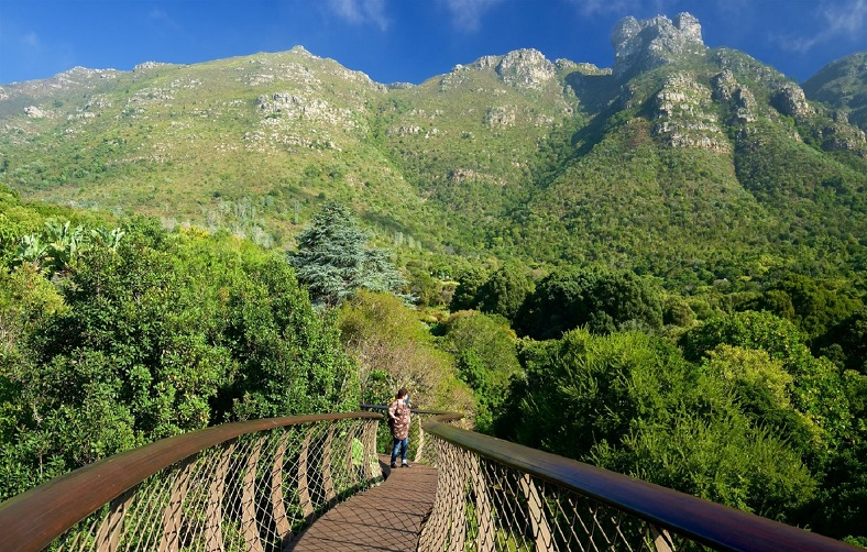 cape-town-top-things-to-do-for-couples